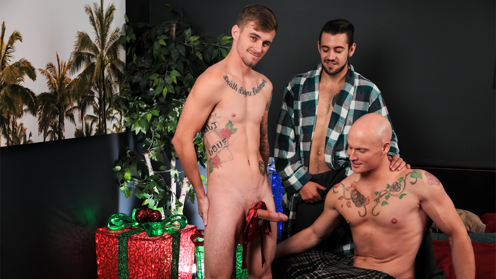 gay furry flash game